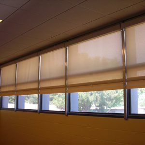 Behavioral Safety Products Webshade WIndow shade