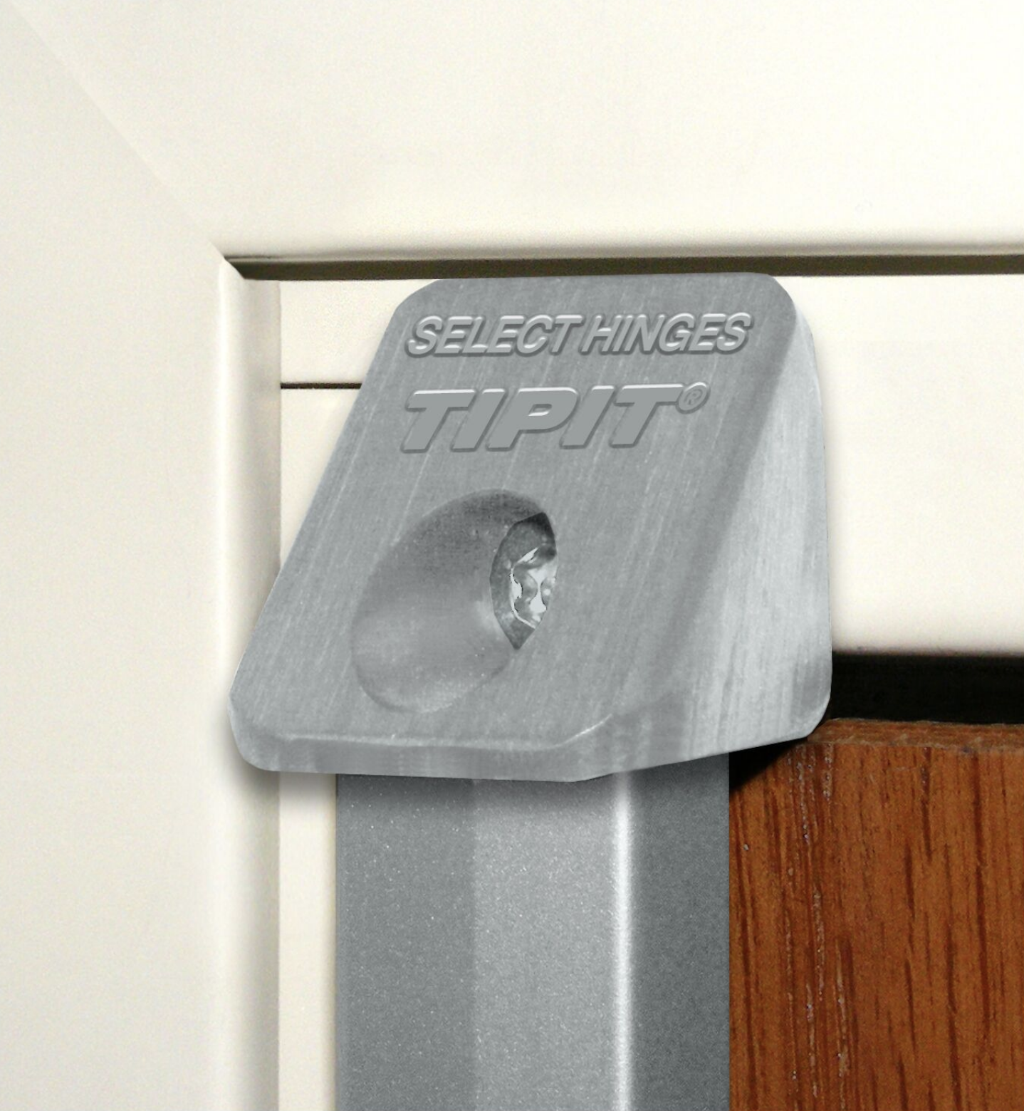 Ligature Resistant Concealed Geared Continuous Hinge - Up Close TIPIT Hinge