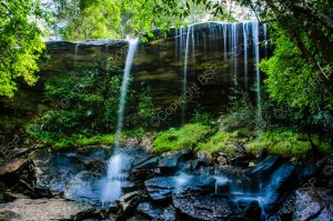 small waterfalls in forest