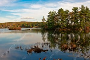 large lake with fall color trees