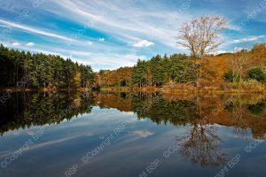 lake with fall color trees