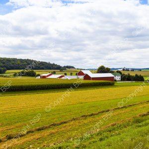 farm field with barn in distance