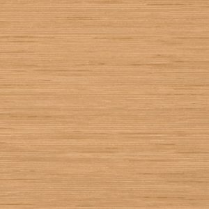 Wood laminate option in Tan Echo for the suicide resistant attenda desk