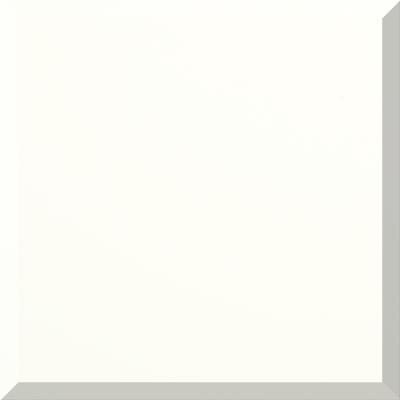6528 Biscuit Color
